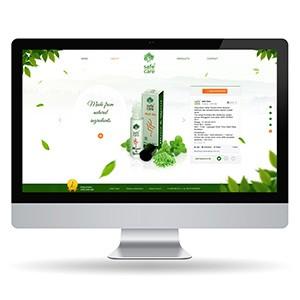 Web Design - Thinksoft